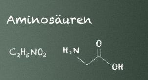 Aloe Inhaltsstoffe: Aminosäure